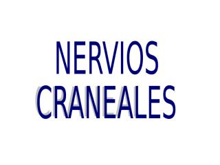 Nervios Craneales.ppt