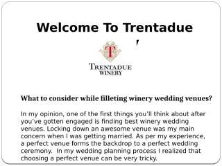 Winery Wedding Venues.pptx