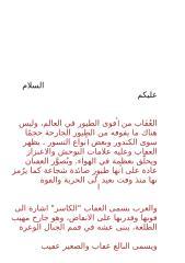 alakab-t.doc